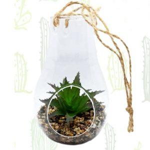 Piantina grassa posta in ampolla di vetro con finto terriccio composto da sabbia colore avana. Bomboniera ideale per matrimonio.