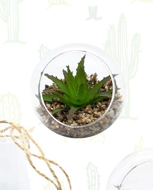 Piantina grassa posta in sfera di vetro con finto terriccio composto da sabbia colore avana. Bomboniera ideale per matrimonio.