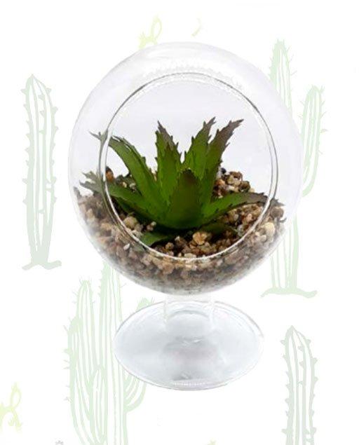Piantina grassa posta in ampolla rialzata di vetro con finto terriccio composto da sabbia colore avana. Bomboniera ideale per matrimonio.